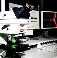 Microscopie Confocal_I3465